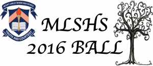 MLSHS Ball 2016 3