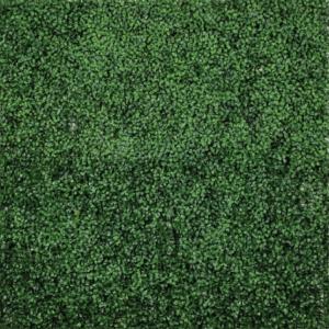 green-wall